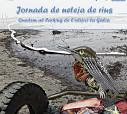 Campaña Manos al Río